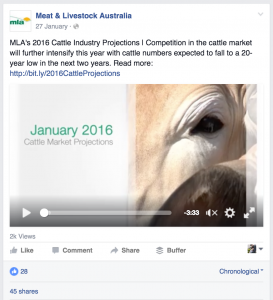 Cattle industry report on Facebook with 2k views